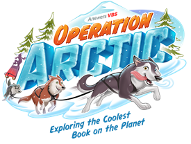 2017operation arctic 200
